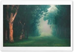 Hd Desktop Picture by Wallpaperswide 4k Hd Desktop Wallpapers For Ultra