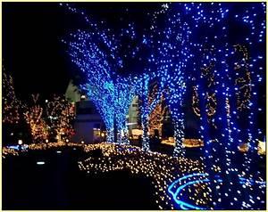 Led light design outside christmas lights dont work