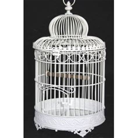 cage a oiseaux decorative pas cher cage oiseau decorative pas cher