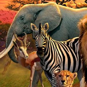 wi 368: African Animals Wallpaper (300x300) Wallimpex com