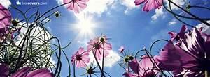 Purple Flowers Blue Sky and Sun Facebook Covers