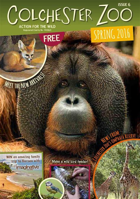 zoo colchester magazine spring issuu