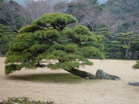 Rechen Für Zen Garten by Zen Garten Geplant Vom Gartenarchitekten