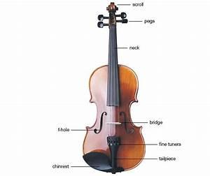 Violin Buyer U0026 39 S Guide  U0026 Comparison Chart