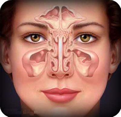 sinus allergy symptoms  treatment options health