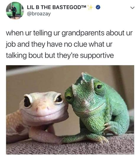 Lizard Meme Viral Now Pictures Memes And Humor