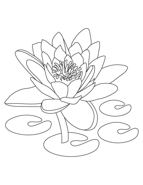 Free Printable Lotus Coloring Pages For Kids   Flower