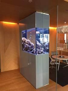 Aquarium Als Raumteiler : meerwasser aquarium als raumteiler in gro raumb ro ~ Michelbontemps.com Haus und Dekorationen