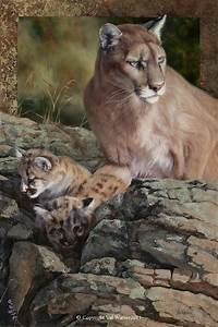 Cougar | Puma | Mountain Lion | painting by Val Warner ...