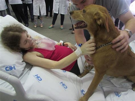 mujer pegada con un perro mujer se queda pegada con un