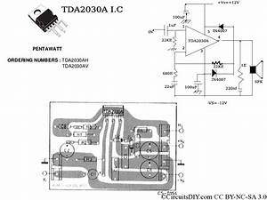 Intex 2000 Watt Woofer Circuit