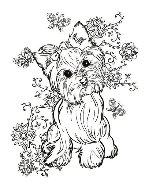 yorkie terrier painting  cindy elsharouni