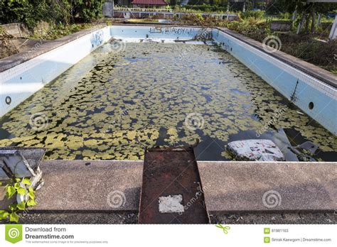 Damaged Old Swimming Pool Stock Image. Image Of Grunge