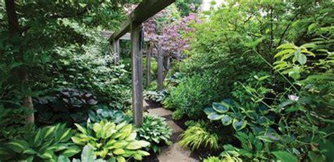 shade garden design garden design