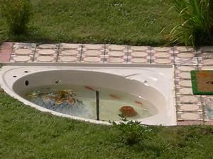 Plante Filtrante Pour Bassin Poisson ~ Befrdesign co