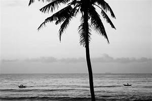 February 2015, Sri Lanka, Black and White Street ...