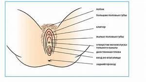 Лечение папилломы яичным белком