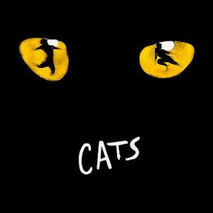 broadway cats cats musical