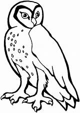 Owl Coloring Pages Animals Printable Animal Owls Barn Stencil Wildlife Hoot Snowy Choretell Printables Templates Sheknows Cartoon Dog Halloween sketch template