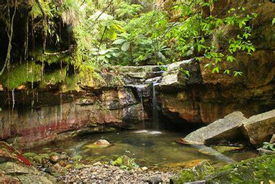 carnarvon gorge outback queensland carnarvon gorge camping