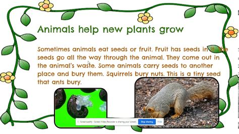Life Science How Animals help plants grow YouTube