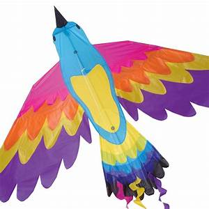 Paradise Bird Kite – Premier Kites & Designs