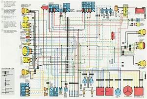 Honda Cx500 Wiring