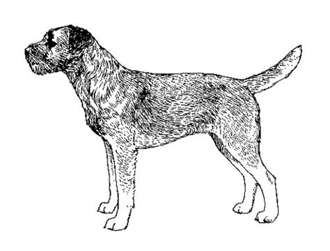 United Kennel Club (ukc
