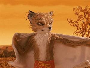 Mr Fox : mine mr fox tumblr ~ Eleganceandgraceweddings.com Haus und Dekorationen