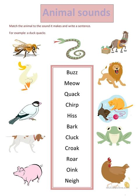 animal sounds worksheet free esl printable worksheets