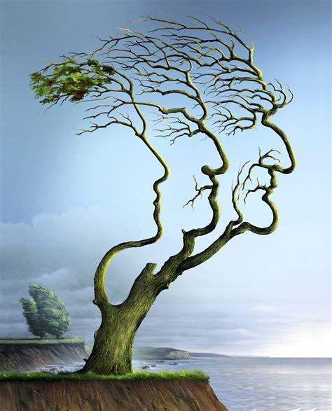chambre d agriculture 13 nature 39 s anti aging secret discovermagazine com