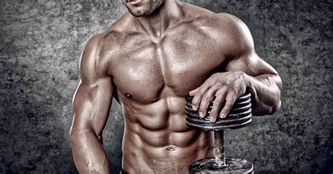 The Ultimate Guide to Muscle Gain and Hypertrophy ...