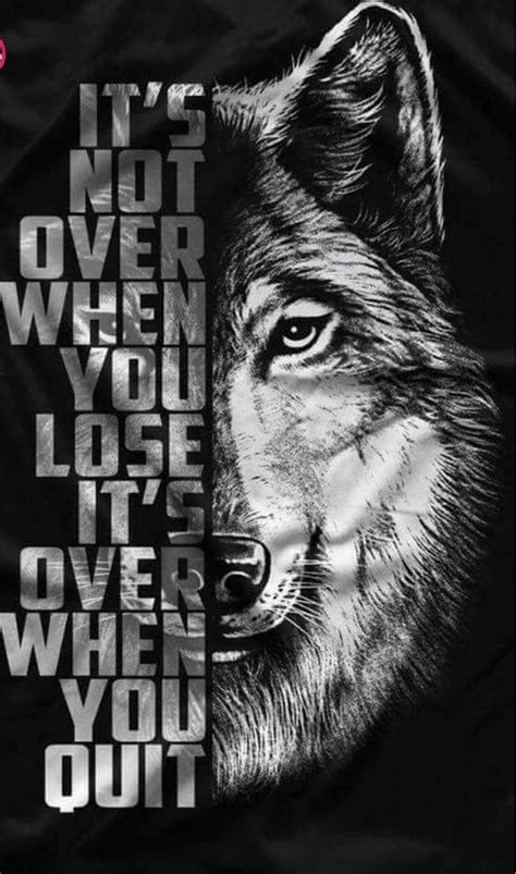 wolf quotes ideas  pinterest warrior quotes