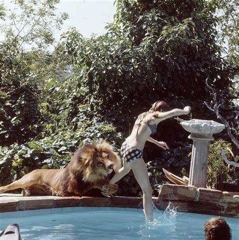 living  neil  lion documented  bizarre photoshoot