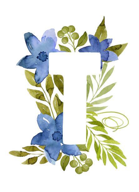 flower blossom decorative botanical elegant alphabet letter  illustrations royalty  vector