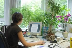 Welche Pflanze Produziert Am Meisten Sauerstoff : leben in geschlossenen r umen die luft macht s pflanzen f r menschen ~ Frokenaadalensverden.com Haus und Dekorationen