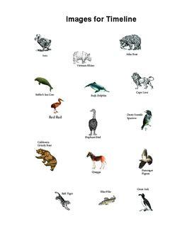 timeline  extinct animals  dr daves science tpt