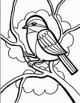 Bird Coloring Printable Templates Template Colouring sketch template