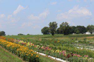 everfresh produce farm market reallancastercounty