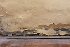 Nasse Wände Im Haus : mauerwerksabdichtung ml abdichtung ~ Lizthompson.info Haus und Dekorationen