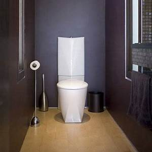 17 best ideas about wc design on pinterest black toilet With couleur de peinture pour wc 4 deco wc originale ciloubidouille