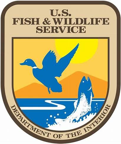 Pesca Vida Silvestre Servicio Wildlife Fish States
