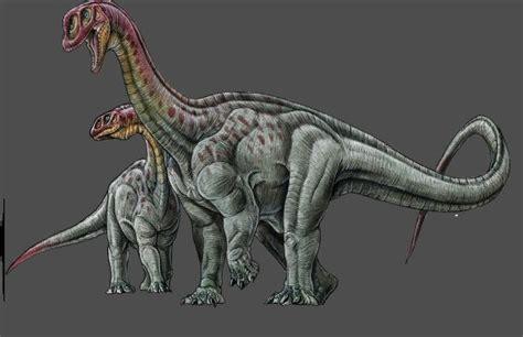 Dinosauro Volante Dinosauro Volante Nome