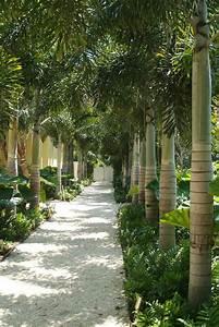 Allee De Jardin Facile : cr er le plus beau jardin avec le gravier pour all e ~ Melissatoandfro.com Idées de Décoration