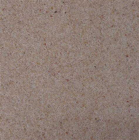 carpet remnants free delivery brintons carpets bell twist oyster carpet remnant b352