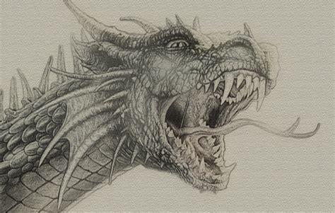 Detailed Image Detailed Sketch By Zapdosify On Deviantart