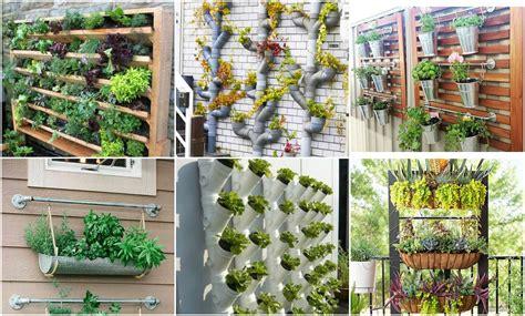 Vertikal Garten Pflanzen pflanzen vertikal anbauen tolle ideen f 252 r einen