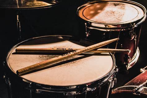 drumstick pictures   images  unsplash