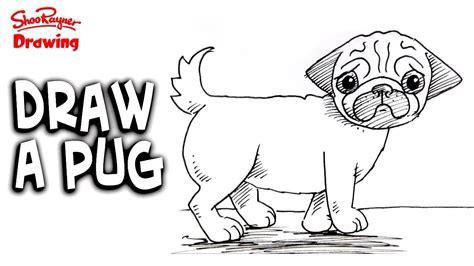 draw  pug easy step  step  beginners youtube