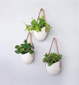 Pot De Fleur Mural : les 25 meilleures id es concernant supports pour plantes ~ Dailycaller-alerts.com Idées de Décoration